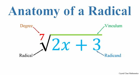 A radical is drawn showing the radical sign, the degree, the vinculum and the radicand